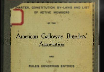 Charakteristické vlastnosti plemena galloway
